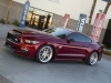2015 Ford Mustang Shelby Super Snake